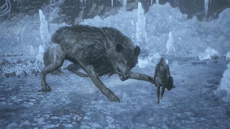 Champion's Gravetender and Gravetender Greatwolf from Dark Souls 3