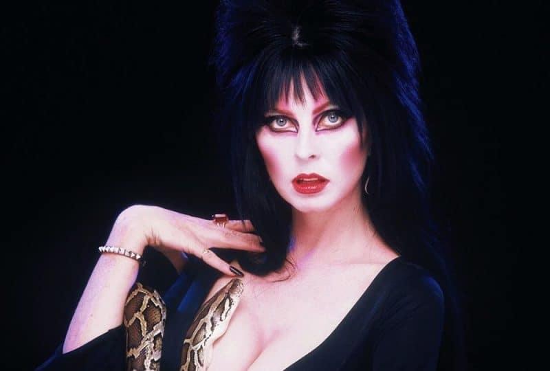 Netflix-Chill-Elvira-Mistress-of-the-Dark-GOG-Games-Snake